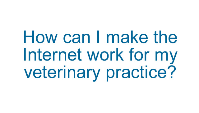 How can I make the internet work for my veterinary practice?