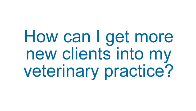 How can I get more new clients into my veterinary practice?